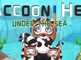 Raccoon Hero Under The Sea